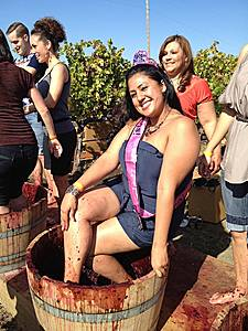 The Big Gay Grape Stomp and Harvest Party 2013 at Peju Winery. (Photo: Courtesy of Out in the Vineyard)