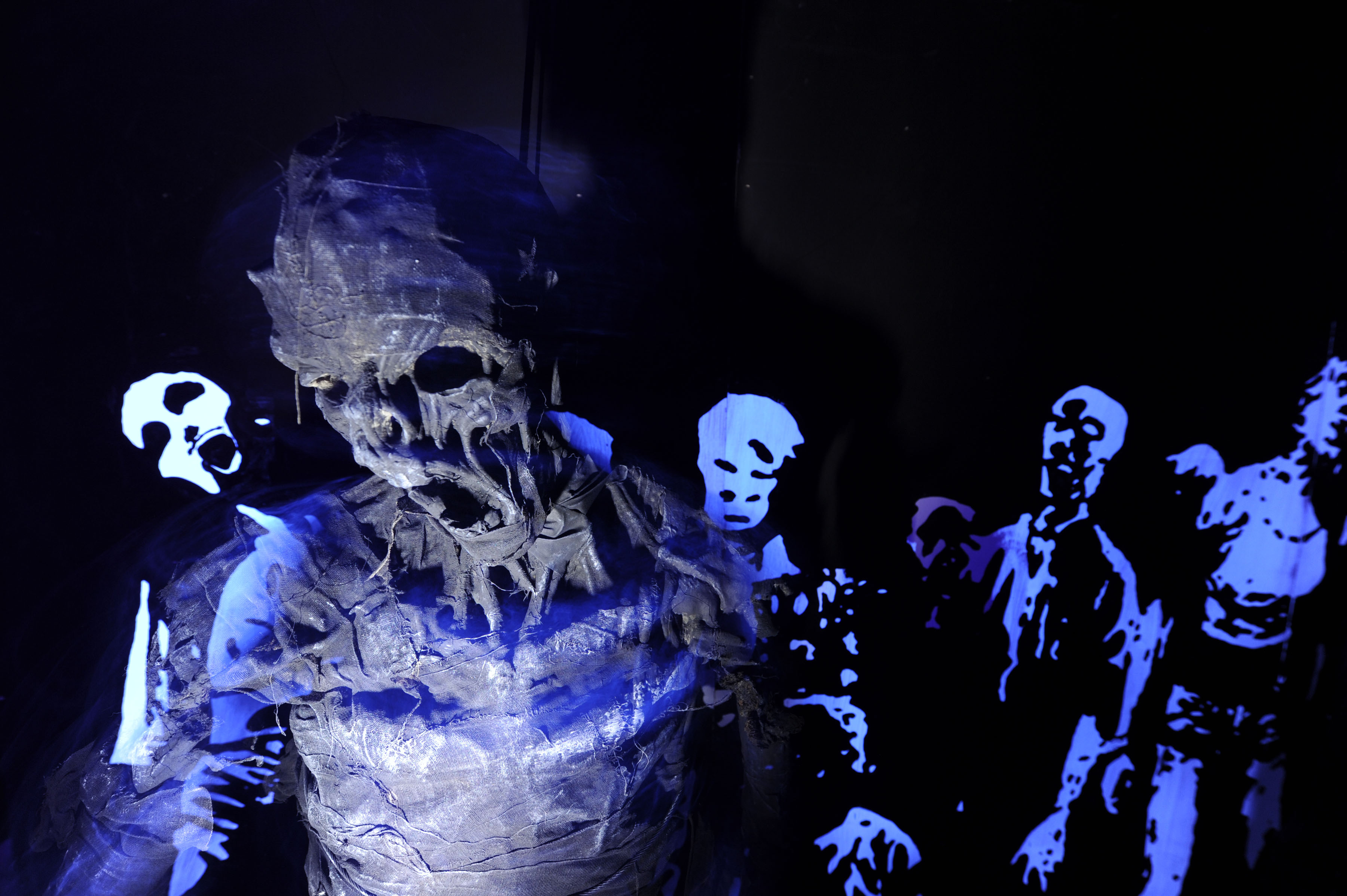A taste of terror surviving zombies roller coasters and - Busch gardens halloween horror nights ...