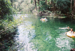 The languid beauty of Blue Spring State Park, 2,600 acres include a stretch of the St. Johns River and the namesake Blue Spring, is nearly intoxicating and only about a 45-minute drive north of Orlando. (Photo: Nicole Clausing)